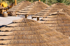 Palapa Huts. Thatched roof  palapa huts along a sandy beach on the Colorado River in the Mojave Desert, Arizona Stock Image