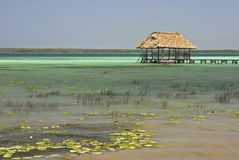Palapa On Lake Bacalar Royalty Free Stock Photo
