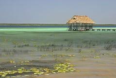 Palapa On Lake Bacalar. A palapa hut at the end of a wooden pier at Lake Bacalar, Quintana Roo, Mexico Royalty Free Stock Photo