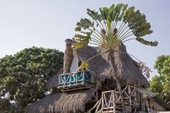 Palapa styled tropical dwelling Stock Photography