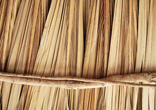 Palapa texture background. Dried palm tree leaves background texture,  wooden sun roof Palapa from mexico Royalty Free Stock Images