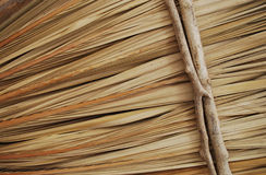 Palapa texture Stock Photography