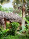 Palapas im Dschungel Lizenzfreie Stockfotografie