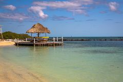 Palapas op het Strand in het eiland van Belize stock afbeelding
