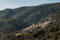 Palasca古老山村在科西嘉 免版税库存图片