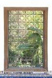 Palast-Garten-Fenster Stockfotografie