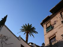 Palast mit Backsteinmauern und Palme stockfotos