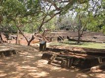 Palastpark in Sigiriya Stockfotos