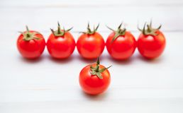 Palatable fresh tomatoes stock image