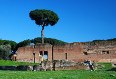 Palatin Hill in Rome stock photo