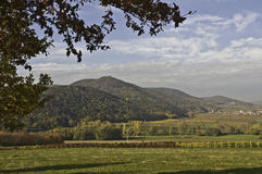 Palatinate Autumn Stock Photos