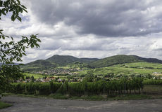 Palatinate Wine Country Stock Image