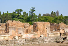 Palatine. Ruins of ancient Rome's site Royalty Free Stock Photography