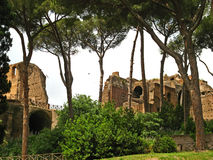 Palatine Hill 03 Stock Image
