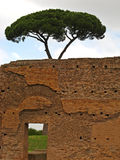 Palatine Hill 06 stock images