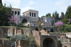 Palatine Hill and Farnese gardens Stock Photography