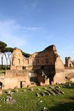 Palatine Hill in Rome Stock Photos