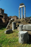 The Palatine Hill in Rome Stock Image