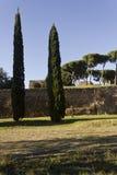 Palatine Hill from Via di San Gregorio in Rome Stock Image