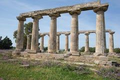 Palatine Lijsten, Metaponto Royalty-vrije Stock Afbeeldingen