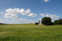 Palatine Summer. A beautiful summer day in the hilly area of the Palatinate region of Germany Royalty Free Stock Image