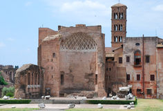 Palatino from Colosseum Royalty Free Stock Photo