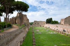 Palatino gardens at Monte Palatino - Roma - Italy Royalty Free Stock Images
