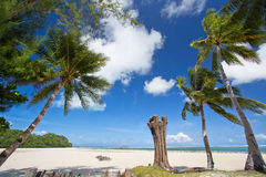 Palau beach Royalty Free Stock Photo