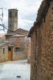 Palau de Noguera, old village in Catalunya Stock Photography