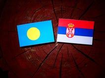 Palau flag with Serbian flag on a tree stump isolated. Palau flag with Serbian flag on a tree stump stock photography