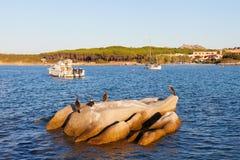 Palau harbour, Sardinia. Royalty Free Stock Image