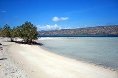 Palau menjangan Imagen de archivo libre de regalías