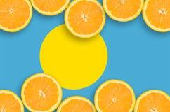 Palauisk flagga i citrusfruktskivahorisontalram arkivbild