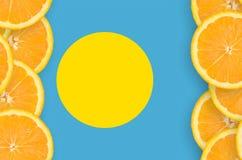 Palauisk flagga i vertikal ram för citrusfruktskivor arkivfoton