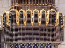 Palauisk GÃ-¼engelsk aln Royaltyfri Fotografi
