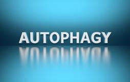 Palavra Autophagy no fundo azul ilustração royalty free
