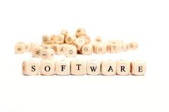 Palavra com software dos dados Fotografia de Stock Royalty Free