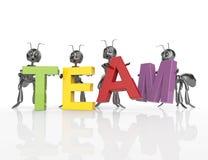 A palavra da equipe com as formigas dos desenhos animados 3d Fotos de Stock Royalty Free