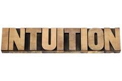 Palavra da intuição no tipo de madeira Imagem de Stock Royalty Free