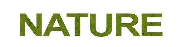 Palavra da NATUREZA da folha verde isolada no fundo branco, tiro macro Conceito: eco-amigável, texto ilustração stock