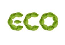 Palavra das folhas verdes Fotos de Stock Royalty Free