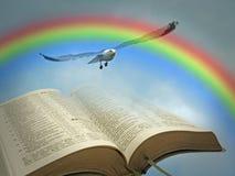 Palavra do céu do scripture santamente do pássaro do arco-íris da paz da Bíblia de deus aberta imagens de stock royalty free