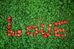 Palavra do ` do AMOR do ` da morango na grama Fotografia de Stock Royalty Free