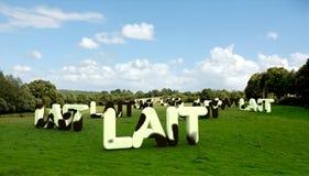 Palavra do leite no lait francês com textura do couro dentro Fotografia de Stock