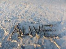 Palavra inspirada viva da areia Imagens de Stock Royalty Free