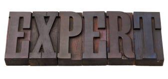 Palavra perita no tipo da tipografia Imagens de Stock