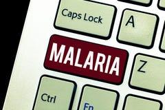 Palavra que escreve a malária do texto Conceito do negócio para o mosquito risco de vida carregado períodos da doença de sangue d imagem de stock