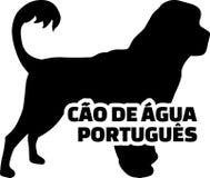 Palavra real da silhueta dos portugues do Cao de gua Imagens de Stock