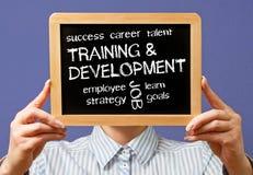 Palavras do treinamento e do desenvolvimento imagens de stock royalty free