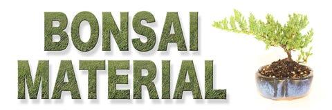 Palavras materiais dos bonsais com árvore crescente foto de stock